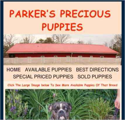 Parkers Precious Puppies, a website created with Sandvox